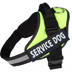 Service Dog Harness Green Vest for Sale in Hudson, FL