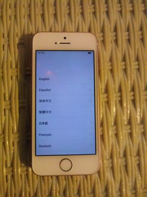 IPHONE SE UNLOCKED 64GB (NO CHARGER) for Sale in Littleton, CO