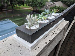 Succulent Planters for Sale in Austin, TX