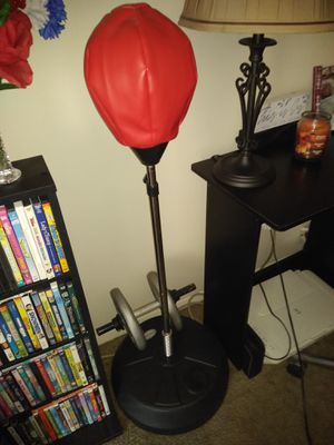 Punching bag for Sale in Baltimore, MD