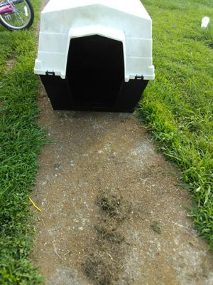 Used plastic dog house (large breed) for Sale in Tullahoma, TN