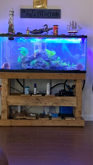 Fish tank and everything for Sale in Adelphi, MD