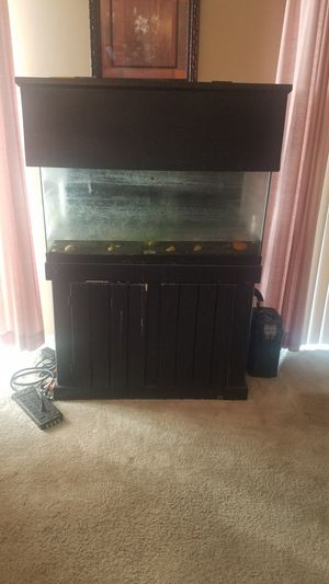 40 gallon fish tank with stand and canopy for Sale in Clinton, MD