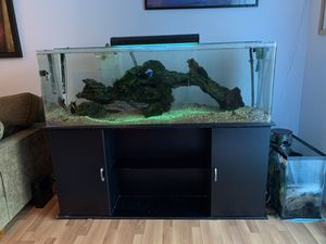100 Gallon Fish Tank for Sale in Pittsburg, CA