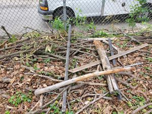 Free fire wood great for camps for Sale in Lowell, MA