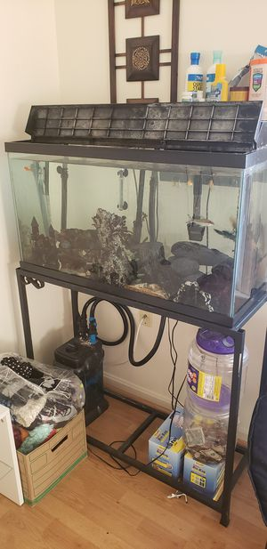 Fish tank and accesories for Sale in Winchester, VA