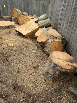 Free wood for Sale in Federal Way, WA