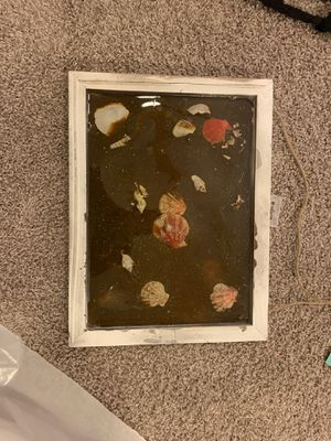 Seashell/ocean 3D picture for Sale in Fort Worth, TX
