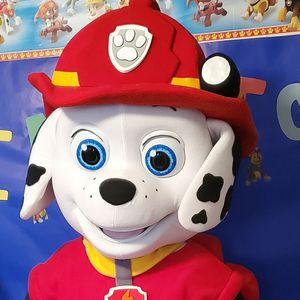 Paw patrol character Minnie Mickey Babyshark lol doll surprise for Sale in Maricopa, AZ