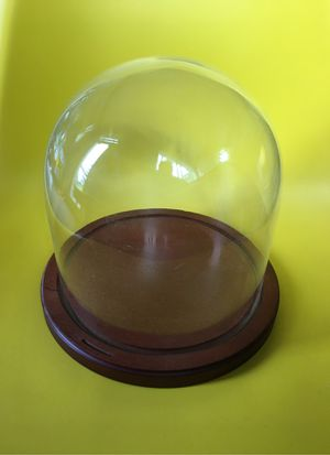 """8"""" x 8"""" glass display case dome for Sale in Beaverton, OR"""