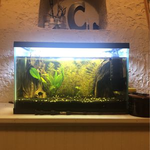 10gallon fish tank set for Sale in Seattle, WA