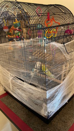 4 birds and with cage for Sale in Reisterstown, MD