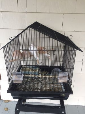 Large bird cage only (no birds!) for Sale in Malden, MA