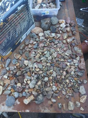 Raw Rocks fossils minerals crystals Lot 25lbs for Sale in Eugene, OR