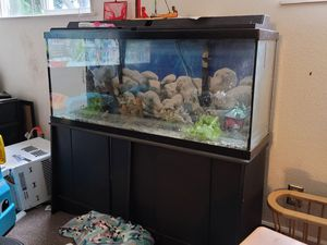 Aquarium plus stand for Sale in Tacoma, WA