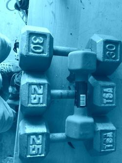 Exercise Weights for Sale in Cape Coral,  FL