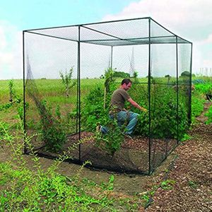 Gateman fruit cage new in the box for Sale in Las Vegas, NV