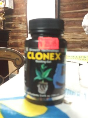 Clonex. For plants for Sale in Waterford Township, MI