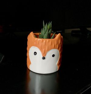 Fox succulent planter, new!!! plant NOT included! Animal planter pot for Sale in Houston, TX