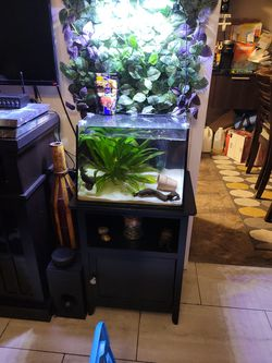 7 gallon Lifeguard AQUATIC FULL VIEW AQUARIUM WITH OVERFLOW BUILT IN  for Sale in New York, NY