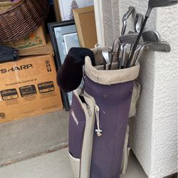Datrex Rolling Golf Bag + Axiom M.S Plus Arnold Palmer Clubs for Sale in Chandler,  AZ
