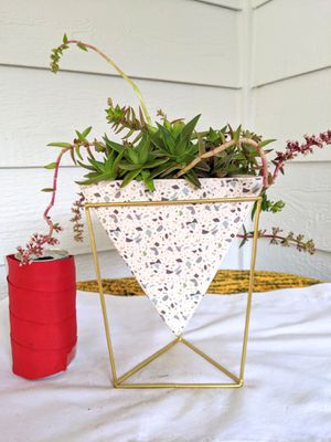 Red Pagoda Succulent Plants in Triangular Pyramid Ceramic Planter Pot with Stand-Real Indoor House Plant for Sale in Auburn, WA