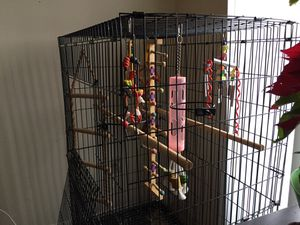 Big bird cage for Sale in OH, US