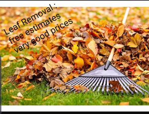 Leaf removal for Sale in Annandale, VA