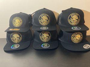 Sinaloa ,michuacan ,Nayarit ,Puebla ,Zacatecas ,Durango hat $20 each for Sale in Hesperia, CA
