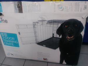 Dog for Sale in Orlando, FL