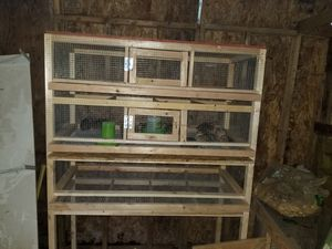 quail cages for sale for Sale in Renton, WA