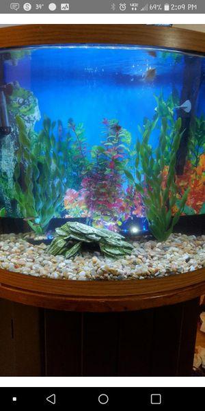 32 Gallon Half Moon Fish Tank for Sale in Glen Burnie, MD