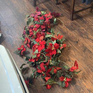Poinsettia Flowers for Sale in Corona, CA