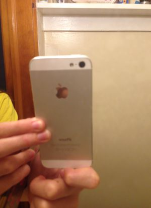 iPhone 5 for Sale in Ishpeming, MI