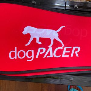 Dog Treadmill For Large Dog for Sale in Fort Lauderdale, FL