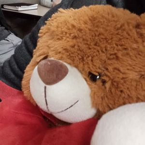 Valentine's Day Teddy Bear for Sale in San Fernando, CA