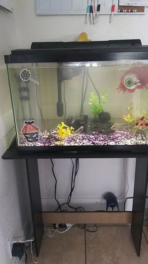 Fish tanks and flowerhorn fish for Sale in Carson, CA