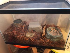 20g tank with accessories for Sale in Long Beach, CA