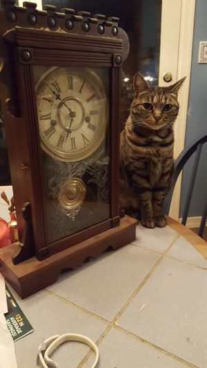 Antique pendulum wind up clock for Sale in Middle River, MD