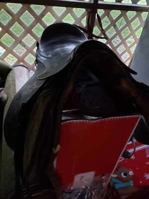 English saddle McLellands for Sale in Lake Worth, FL