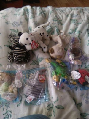 The lot: ty beanie babies,zebra,dolphin,neon seahorse,spike the rhino,smoochy,lucky lady bug,stretchy theostrich. for Sale in Brooks, OR