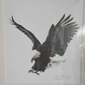 Eagle Print Art Matte Pen Ink Wildlife Animal Prey Flight Signed Susan Holden 1975 for Sale in Crownsville, MD