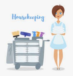 Housekeeping/maid Services for Sale in Pittsburgh,  PA