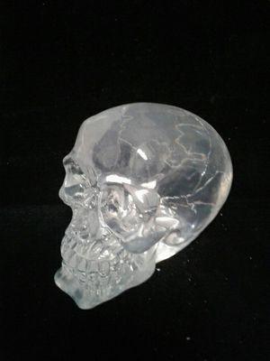 Clear skull for Sale in Denver, CO