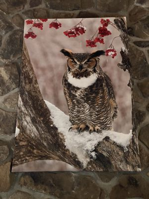 Owl canvas painting for Sale in Marlboro Township, NJ
