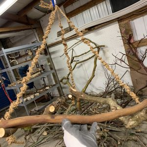 Super Cute Rope Swing For Medium Birds Mixed Wood Perches for Sale in Lake Stevens, WA
