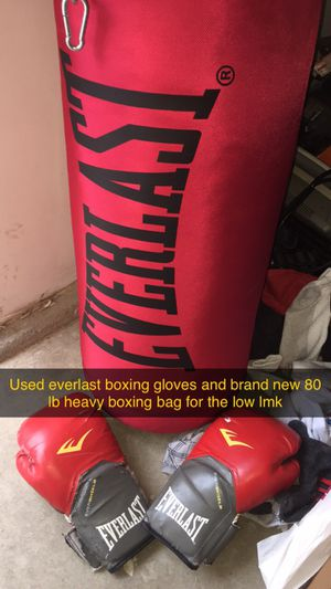 Everlast 80 lb bag for Sale in Madera, CA