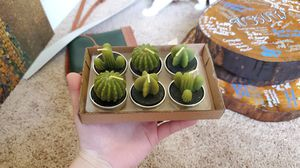 Succulent candles tealights for Sale in Norfolk, VA