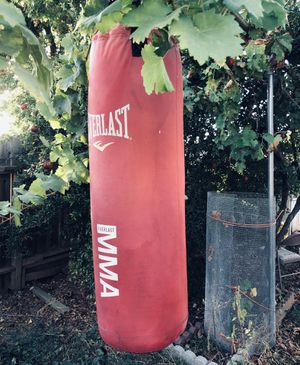 Everlast Punching Bag 60lbs for Sale in Rancho Cordova, CA