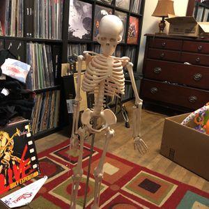 Anatomy Skeleton for Sale in Whittier, CA